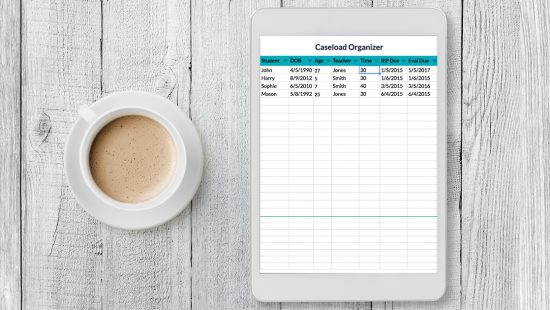 SLPs have enough to keep track of without worrying about lots of papers. This FREE ultimate organization spreadsheet allows you keep lots of data and information all in one spreadsheet, simplifying your life and decreasing clutter! Download the freebie from this blog post.
